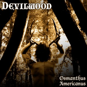 Devilwood
